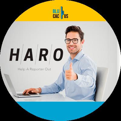 BluCactus - 120 herramientas SEO gratuitas - haro