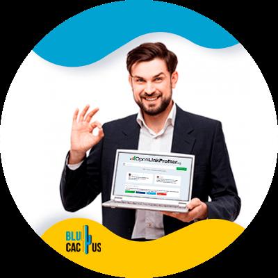 BluCactus - 120 herramientas SEO gratuitas - link profiler