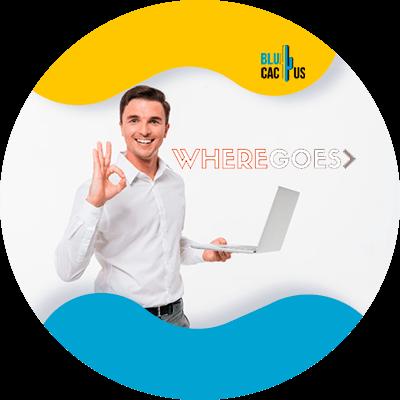 BluCactus - 120 herramientas SEO gratuitas - where goes