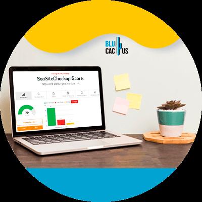 BluCactus - 120 herramientas SEO gratuitas - checkup