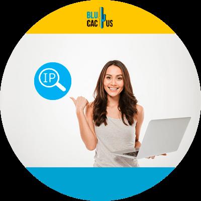 BluCactus - 120 herramientas SEO gratuitas - ip adress