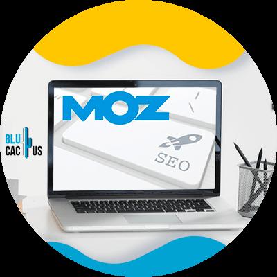BluCactus - 120 herramientas SEO gratuitas - moz