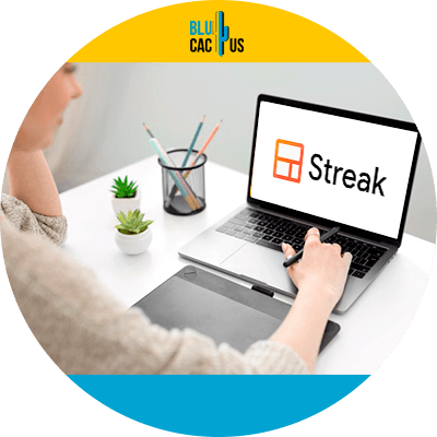 BluCactus - 120 herramientas SEO gratuitas - streak