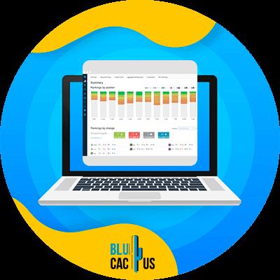 BluCactus - 120 herramientas SEO gratuitas - local search