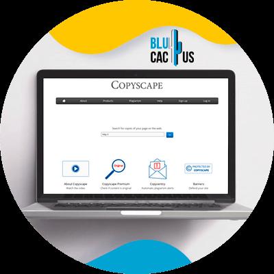 BluCactus - 120 herramientas SEO gratuitas - copyscape