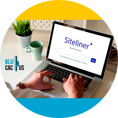 BluCactus - 120 herramientas SEO gratuitas - siteliner