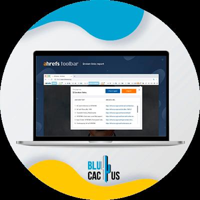 BluCactus - 120 herramientas SEO gratuitas - seo toolbar