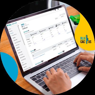 BluCactus - 120 herramientas SEO gratuitas - bing