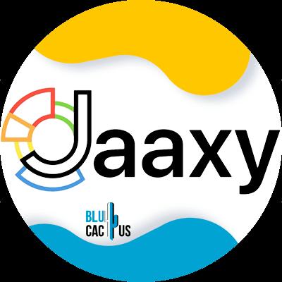 BluCactus - 120 herramientas SEO gratuitas - jaaxy