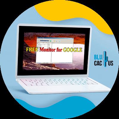BluCactus - 120 herramientas SEO gratuitas - free monitor