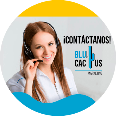 BluCactus - Estrategias de marketing digital para abogados - contactenos