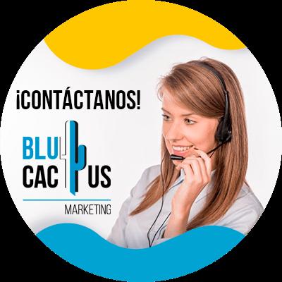 BluCactus - Marketing digital para principiantes - contactenos