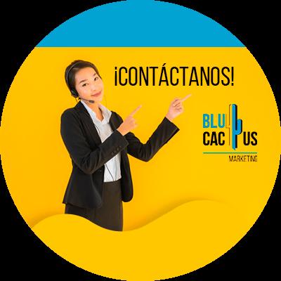 BluCactus - Pasarelas de moda digitales - contacto