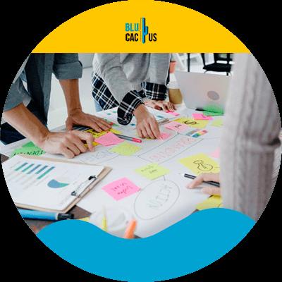 BluCactus - Marketing digital para principiantes - contenido de mercado