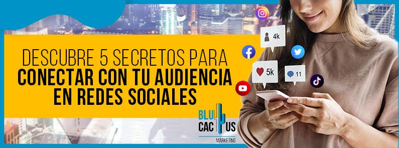 BluCactus - audiencia en redes sociales - titulo
