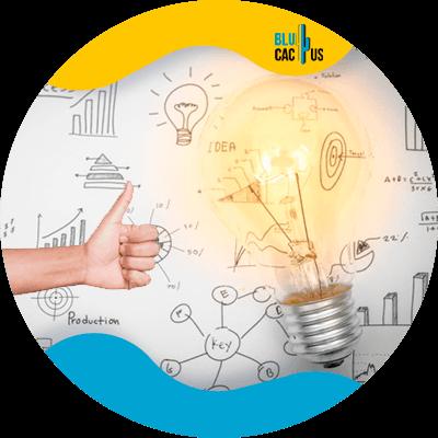 BluCactus - Marketing digital para principiantes - focos