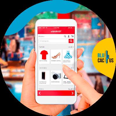 BluCactus - Ventajas y desventajas de un e-commerce - persona profesional trabajando