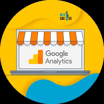 BluCactus - Marketing digital para principiantes - google analytics