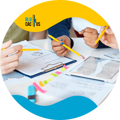BluCactus - Marketing digital para principiantes - plan de marketing