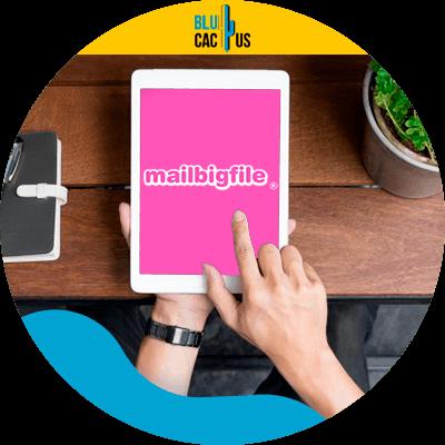 BluCactus - mejores herramientas para enviar grandes archivos - ejemplo de envios de grandes archivos