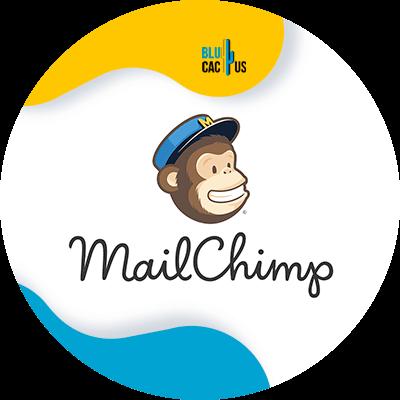 BluCactus - Marketing digital para principiantes - mailchimp