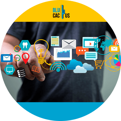 BluCactus - marketing online