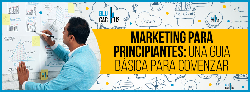 BluCactus - Marketing digital para principiantes - titulo