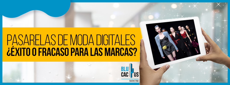 BluCactus - Pasarelas de moda digitales - titulo