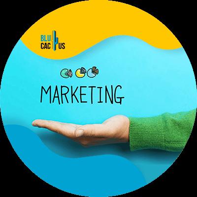 BluCactus - Marketing digital para principiantes - arketing