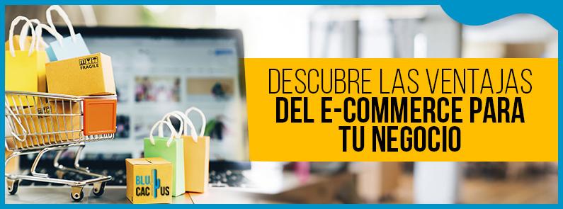 BluCactus - Ventajas y desventajas de un e-commerce - titulo