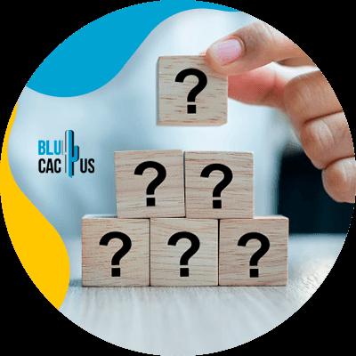 BluCactus - cubos de preguntas
