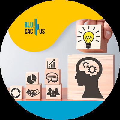 BluCactus - Marketing digital para principiantes - conceptos basicos