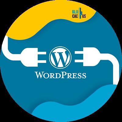 BluCactus - Marketing digital para principiantes - wordpress