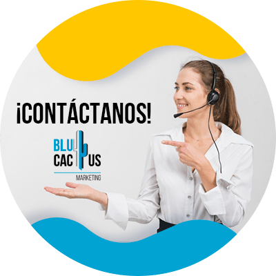 BluCactus - contactanos