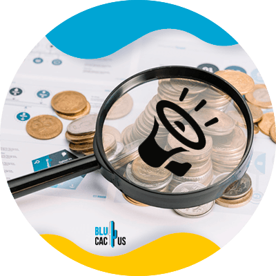 BluCactus - Estrategias de marketing para la industria financiera - lupa
