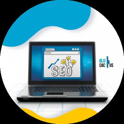 BluCactus - tendencias de Marketing para empresas de seguros - SEO