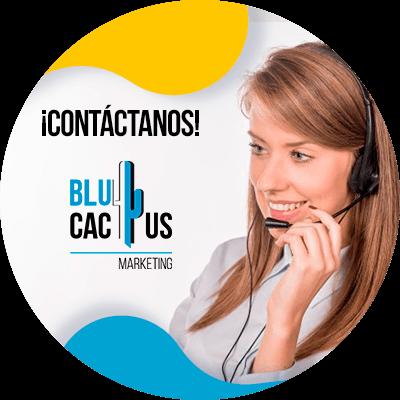 BluCactus - Marketing para el sector automotriz - contacto