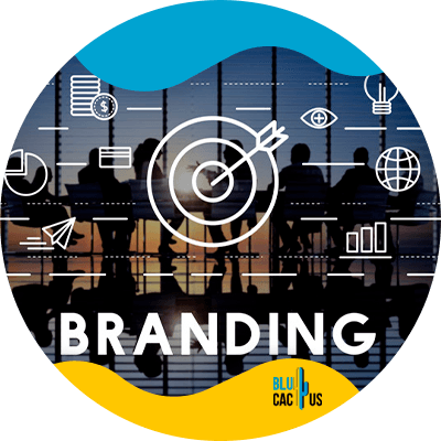 BluCactus - Estrategias de marketing para la industria financiera - branding