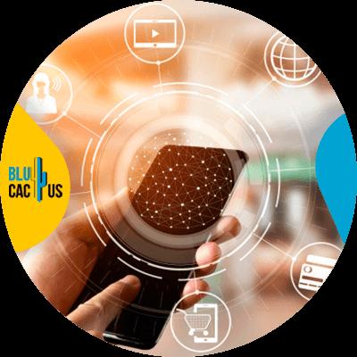 BluCactus - Marketing para el sector automotriz - online
