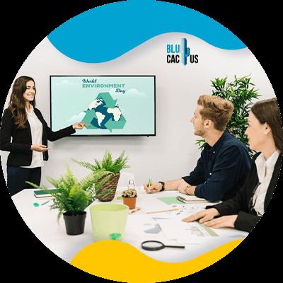 BluCactus - personas trabajando profesionalmente