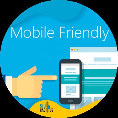 BluCactus - mobile friendly