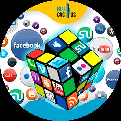 BluCactus - Marketing para el sector automotriz - redes sociales