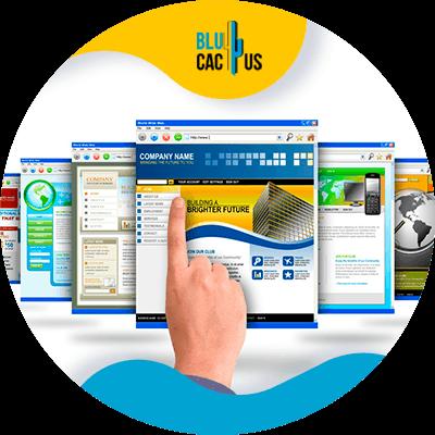 BluCactus - Marketing para el sector automotriz - pagina web