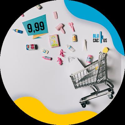 BluCactus - precios acabados