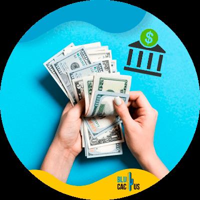 BluCactus -dinero