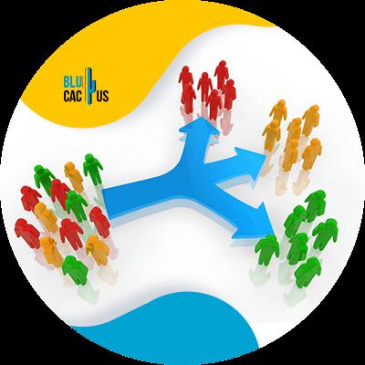 BluCactus - Marketing para el sector automotriz - segmenta