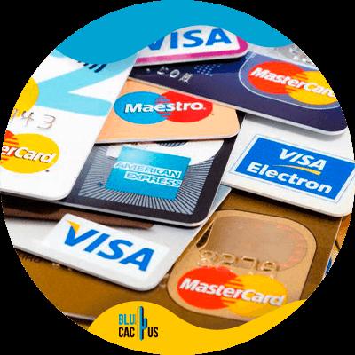 BluCactus - tarjetas