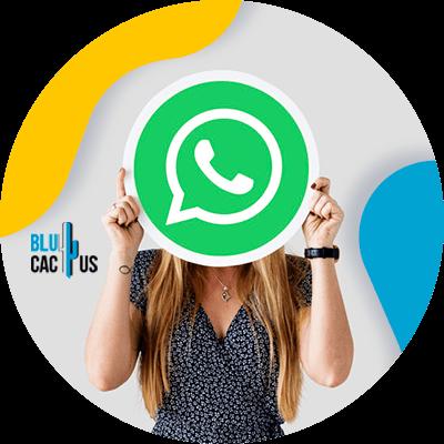 BluCactus - whatsapp