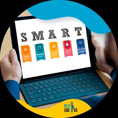 BluCactus -smart