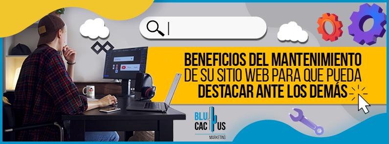 BluCactus - Beneficios del mantenimiento de su sitio web. - titulo